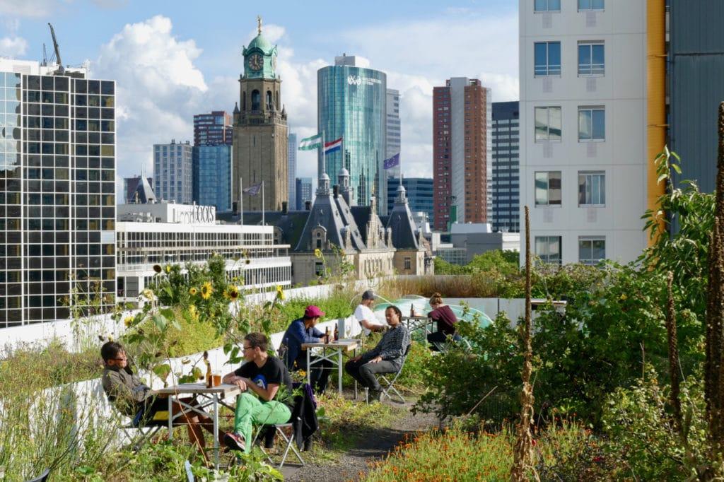 Rotterdam Op het dak