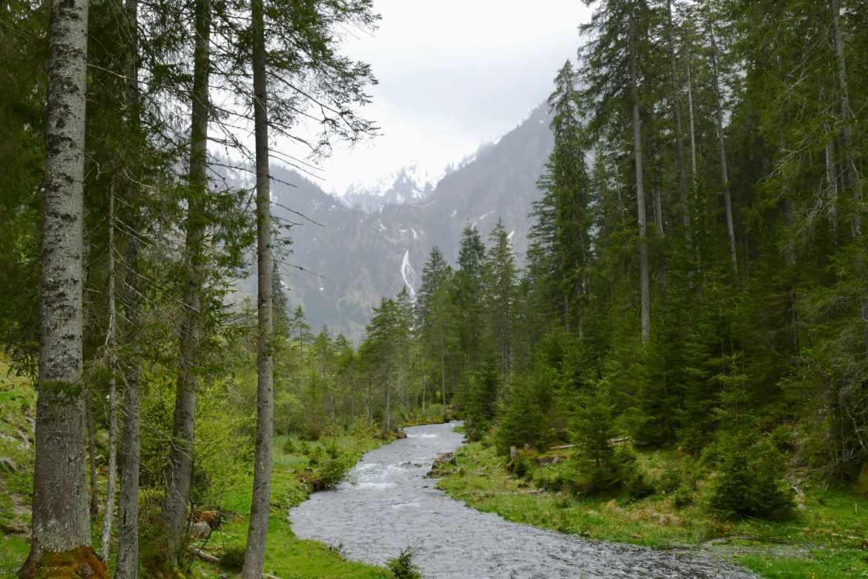 River Steirischer Bodensee
