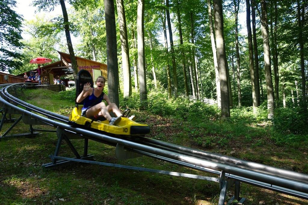 Riding the Harzbob line