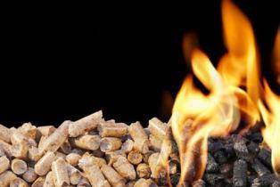 Biomasse : Mini Green Power en pleine croissance
