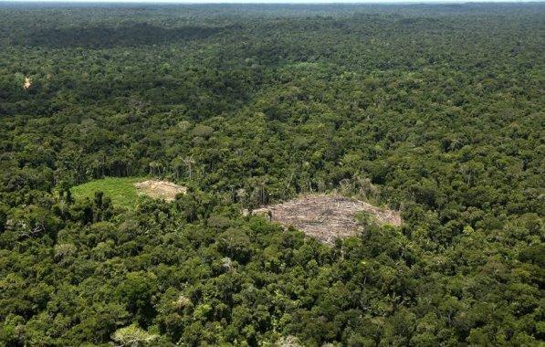 Deforestación. Esta foto grafica cómo los bosques van perdiendo terreno frente a la agricultura migratoria en diversos lugares de la Amazonía peruana.