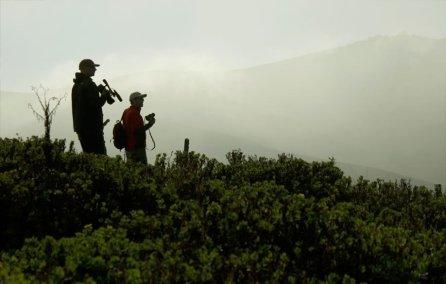 Pese a ello, la comunidad sigue adelante y con el apoyo de TNC, la Universidad San Agustín de Arequipa y la organización YacuAllpa están implementando un proyecto de conservación que tiene entre otras metas, reforestar al menos 100 a 150 hectáreas de bosque nativo.
