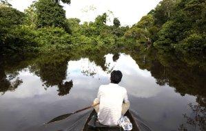 Río Amazonas. Foto: Thomas Müller