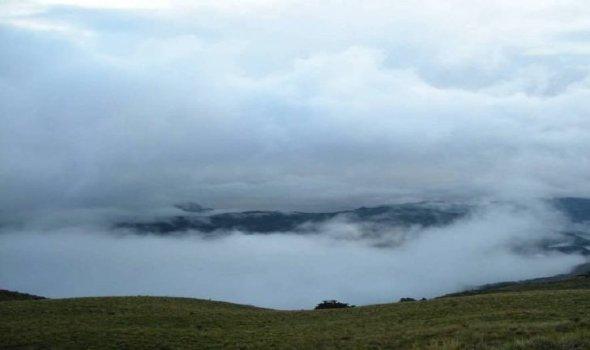 bosque de neblina samanga 1