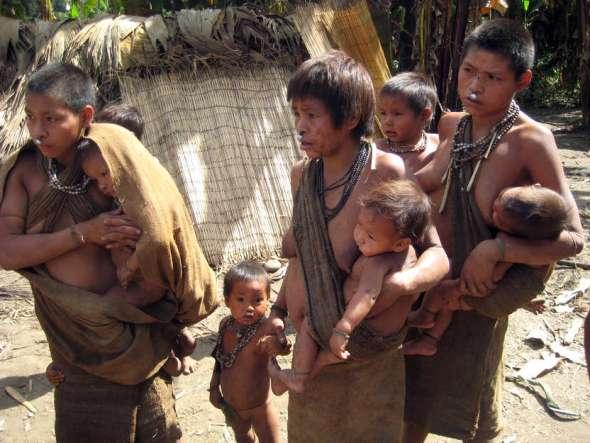 nahua-nanti_survival
