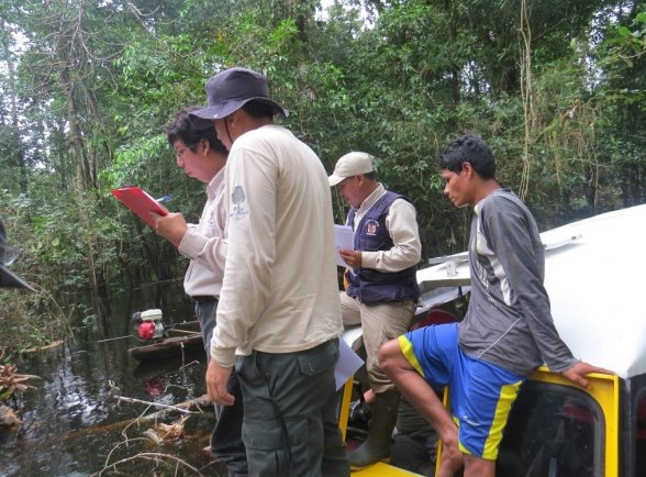 tala ilegal pacaya samiria_sernanp2