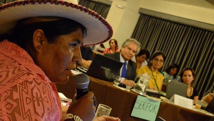 760_actualidad_ambiental_ley_forestal_consulta_previa_1