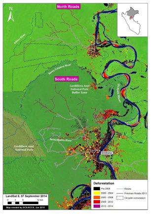 Deforestación en Parque Nacional Cordillera Azul