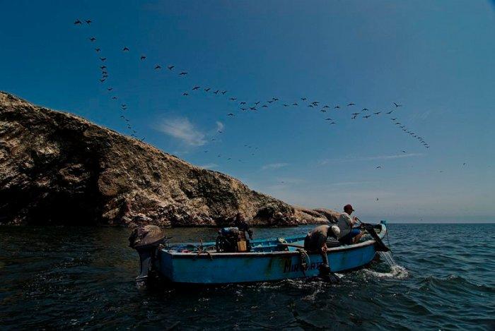 3 marino costera_sernanp