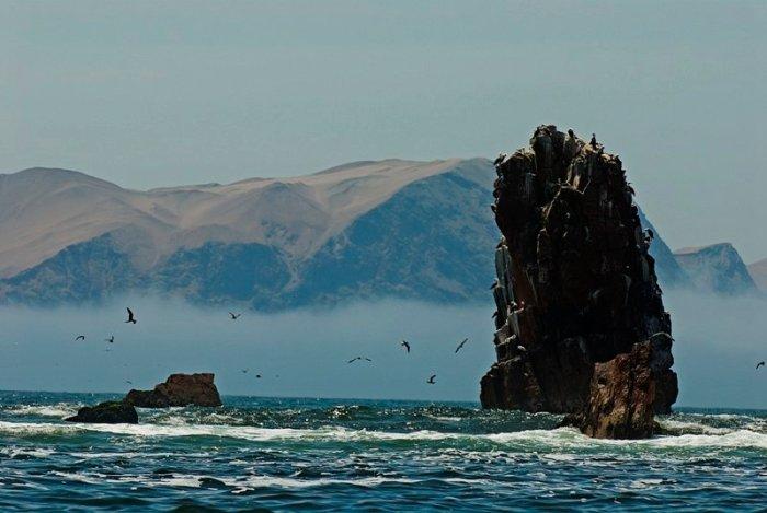 4 marino costera_sernanp