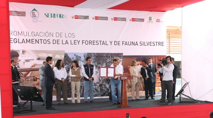 reglamento_ley_forestal_fauna_silvestre_actualidad_ambiental