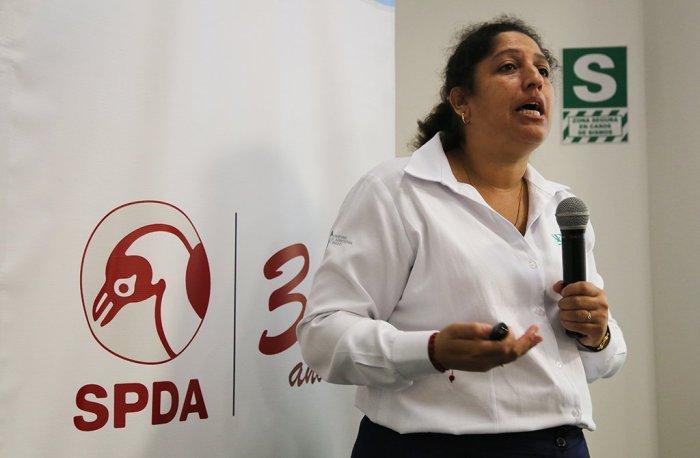 castana_actualidad_ambiental_madre_de_dios_06