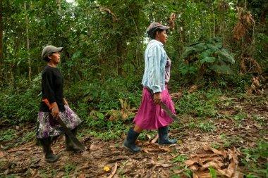 María Tamani y Rosa Pacaya caminan hacia la zona donde crece la chambira (Astrocaryum chambira), un tipo de palmera cuyas fibras se utilizan para elaborar artesanías.