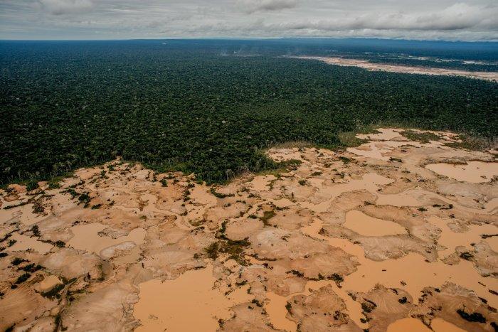 madre_de_dios_actualidad_ambiental_reserva_nacional_tambopata_1