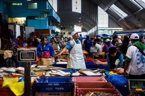 El Terminal Pesquero de Villa María del Triunfo es quizás uno de los mejores lugares del Perú y el mundo para comprar productos marinos. En su interior, se puede encontrar de todo ya que hasta él llega la pesca de todo el litoral.