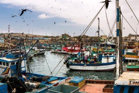 El Puerto de Talara en Piura es quizás uno de los mas ajetreados del norte. Desde ahí salen y regresan todo el día embarcaciones de todo tamaño.