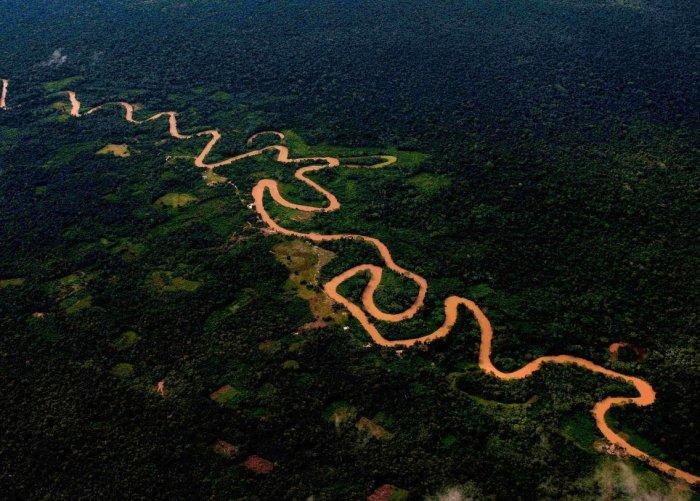 actualidad_ambiental_carretera_amazonia