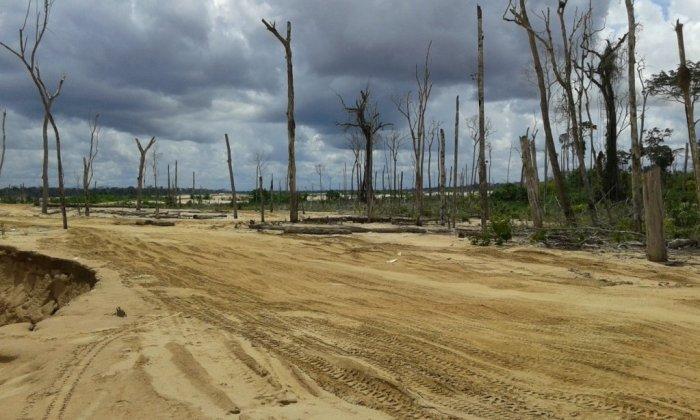 actualidad_ambiental_reserva_tambopata_5