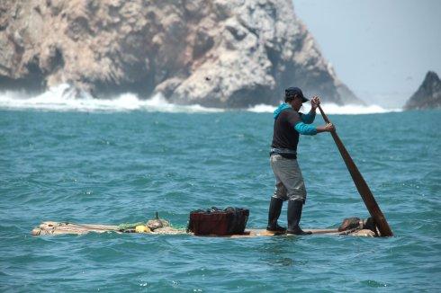 Pesca artesanal. En la zona se puede observar cómo los habitantes del lugar realizan estas actividades de pesca con prácticas ancestrales en estas aguas que albergan más del 70% de especies marinas del Perú. Especies comerciales como la langosta verde, el pulpo, calamar, cabrilla, lenguado, mero, entre otros, son parte del ecosistema. Foto: SPDA