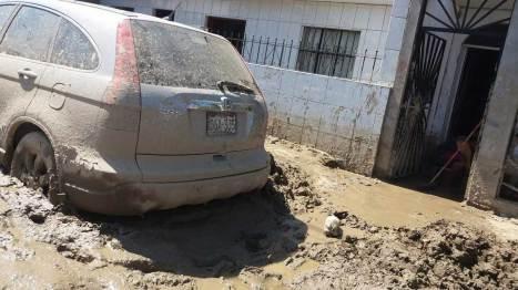 Así lucen los vehículos que soportaron la inundación.