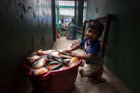 Como alternativa a la pesca en el río, comunidades nativas realizan parrillas con paco de piscigranjas.