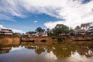 La ACR Ampiyacu Apayacu protege 434 120.34 hectáreas de bosques Amazónicos, de los distritos de Maynas y Ramón Castilla. Foto: Spectabilis/SPDA