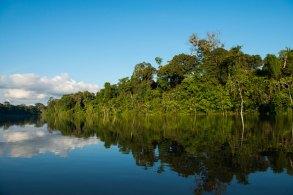 yaguas-bosque-y-rio-sernanp