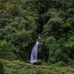 El paisaje que brinda el encuentro de los Andes y la Amazonía es de una belleza particular. Foto: Diego Pérez | SPDA