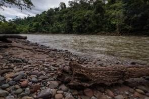 Concesión para Conservación El Breo, Alto Huayabamba - San Martín. Esta se encuentra ubicada en la zona de amortiguamiento del Parque Nacional del Río Abiseo. Foto: Diego Pérez / GIZ