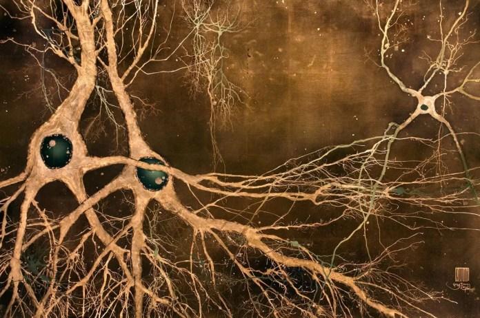 Neurociencia de la creatividad