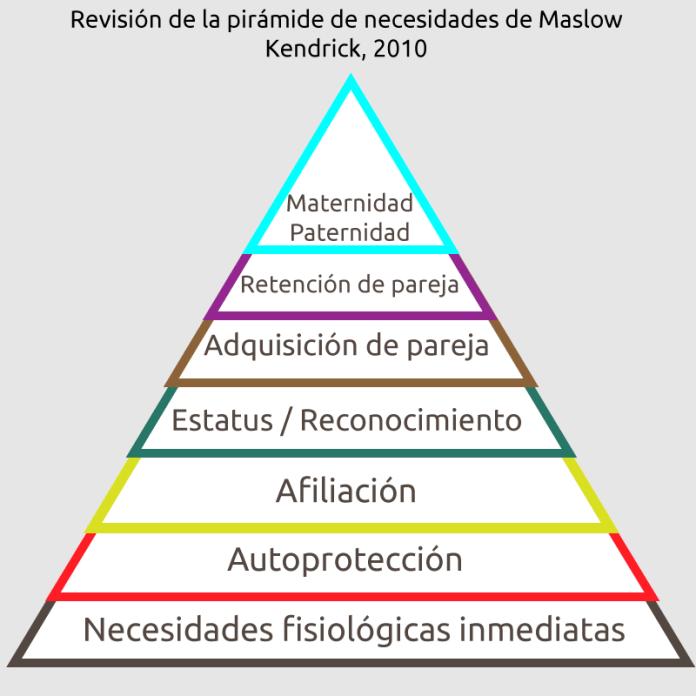 Revisión de la pirámide de necesidades de Maslow Kendrick, 2010