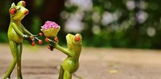 ¿Qué tipos de regalos generan más felicidad?