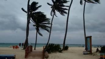 playasanandres