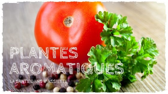 You are currently viewing Plantes aromatiques: mettez la santé dans l'assiette!