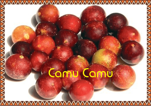 You are currently viewing Le camu-camu: le fruit super-puissant d'Amazonie
