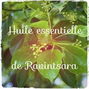 Huile essentielle de base : le Ravintsara