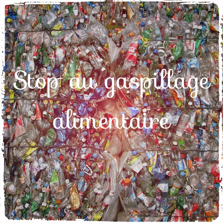You are currently viewing Stop au gaspillage alimentaire