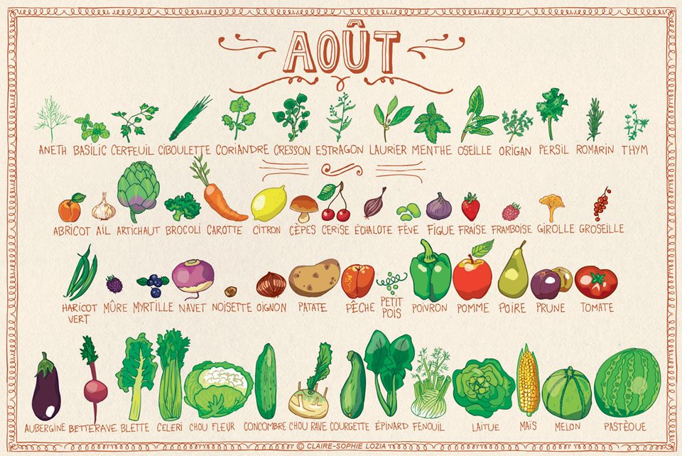 You are currently viewing Fruits et légumes d'août