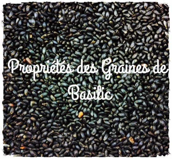 You are currently viewing Pourquoi consommer des graines de Basilic?