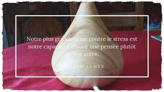 You are currently viewing Mon rituel du soir: diffuser des huiles essentielles