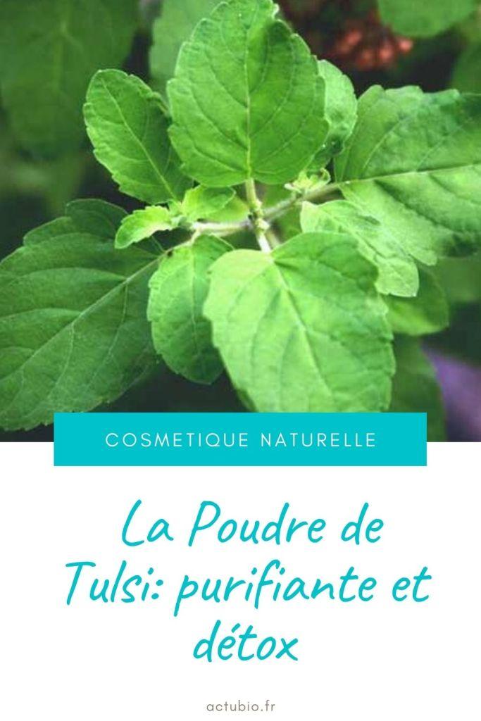 La poudre de Tulsi est un excellent purifiant pour les peaux grasses et pour éliminer les pellicules et sebum des cheveux gras.