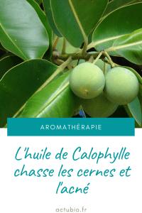 Read more about the article Bienfaits de Huile végétale de calophylle inophylle (Huile de Tamanu)
