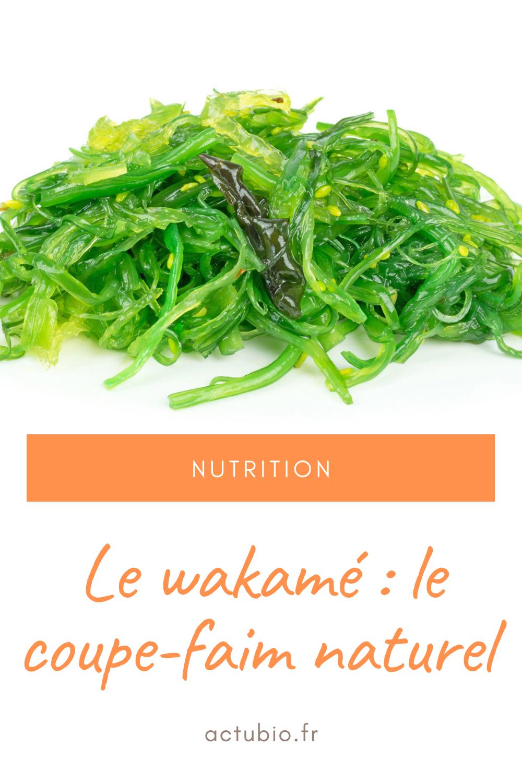 Le wakamé apporte des minéraux et vitamines à l'organisme. En cas de régime pour perdre du poids, le wakamé peut vous aider car il a un effet coupe-faim :)