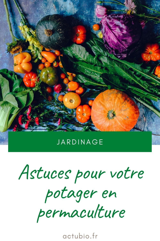 Astuces pour potager en permaculture
