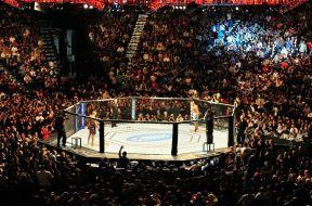 UFC-Octogone-MMA-France