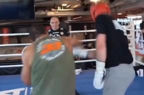 Paulo-Costa-Paul-Logan-UFC