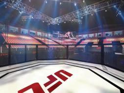 lieu-UFC249