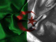 Drapeau Algérie Mondial 2014