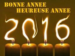 belle année 2016 soprt