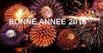 bonne année 2016 artifice feux